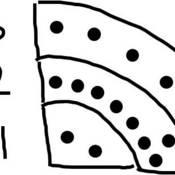 Bohr Model of an Atom