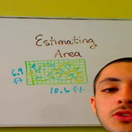 Estimating Area