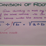 Division of Roots