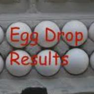 "Egg Drop Results ""How to Find the Percent of Survivors"""