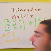 Triangular Matrices