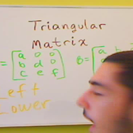 Triangular Matrices