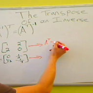 The Transpose of an Inverse Matrix