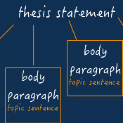 Body Paragraphs and Transitions