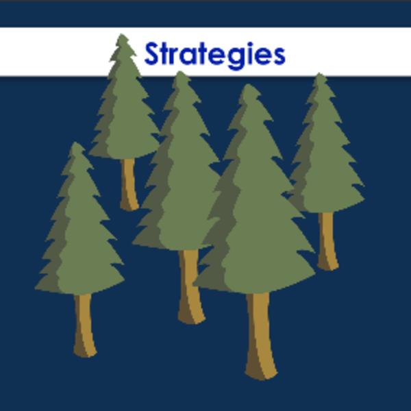 Editing and Editing Strategies