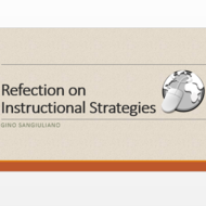 Reflection on Instructional Strategies
