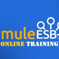 MULE ESB Online Training Tutorial | Sophia Learning