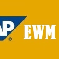 SAP Extended Warehouse Management (EWM) Online Training