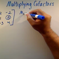 Multiplying Cofactors
