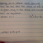 Plugging in a Value and Solving
