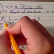 Degree in Polynomials