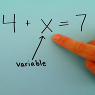 Definition of a Variable