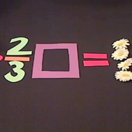 Fractions in Equations
