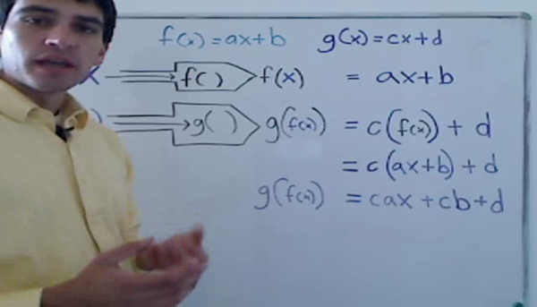 The Function of a Function