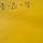Algebraic Fraction Equations