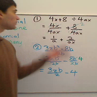 Polynomials Divided by Monomials