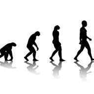 Intro to Evolution