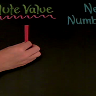 Taking the Absolute Value of a Negative