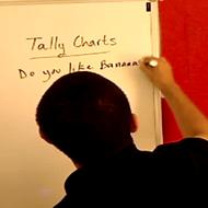 Tally Charts