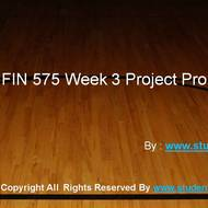 FIN 575 Week 3 Project Plan Outline