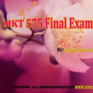 MKT 575 Final Exam (Newest)