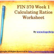 FIN 370 Week 1 Calculating Ratios Worksheet Assignment
