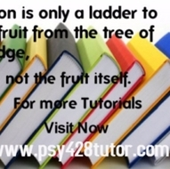 PSY 428 Course help Become Exceptional  / psy428tutor.com