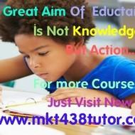 MKT 438  Slingshot Academy  / mkt438tutor.com