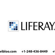 Liferay Developer Online Training