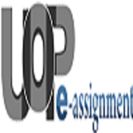 STR 581 Final Examination Part 2 Question & Answers - UOP E Assignments