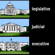 The Three Branches of the Government of the United States of America
