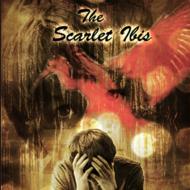Scarlett Ibis Overview