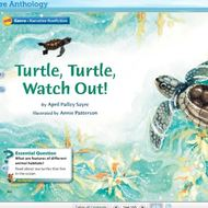 Flipped Classroom- Turtle, Turtle, Watch Out