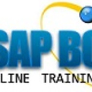 Training Online SAP BO 4.2