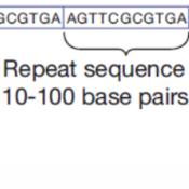 F07-02 DNA Profiles