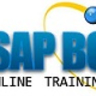 Training Online SAP BO