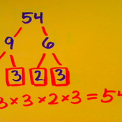 Factor Trees