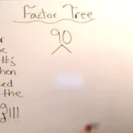 Constructing a Factor Tree
