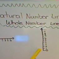 Natural Number Line