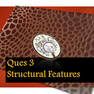 Paper 1 A02 Ques 3 - Analysing Structural Features