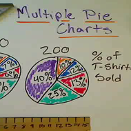 Multiple Pie Charts