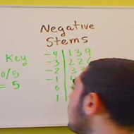 Negative Stems