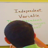 Independent Variable for Data