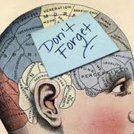 Psychology Memory
