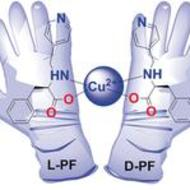 Chiral Ligands