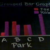 Grouped Bar Graphs