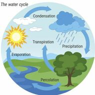 The Earths Water Cycle