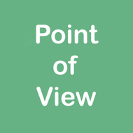 1st Person Point of View or 3rd Person