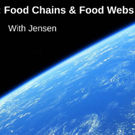 Food Chains and Food Webs: Energy