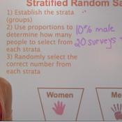 Stratified Random and Cluster Sampling